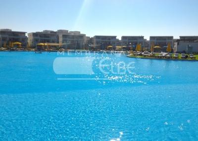 elbe_blue_line_proyecto_egypto1